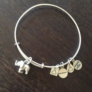 Alex and Ani Elephant Charm Bangle 🐘